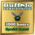 Given to pilots who have passed the 3000 hours mark
